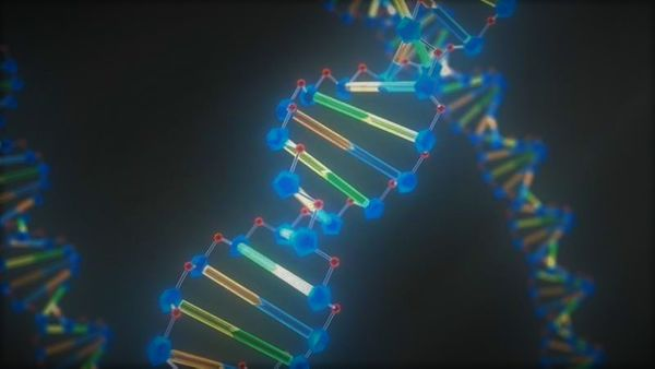 The 21st Century Epigenomic Revolution